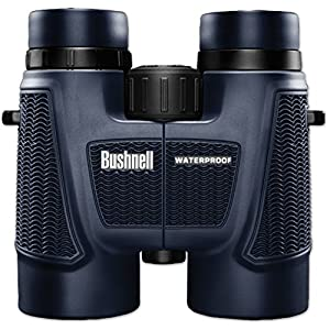Best Binoculars for Astronomy, Bird Watching and Hunting in the World