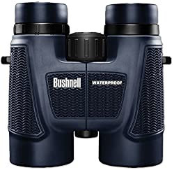 Bushnell H2o Waterprooffogproof Roof Prism Binocular, 10 X 42-mm, Black