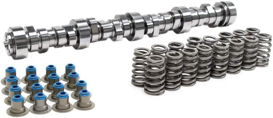 Brian Tooley Racing BTR Vortec Truck Stage 2 Cam and Spring Kit 4.8 5.3 6.0