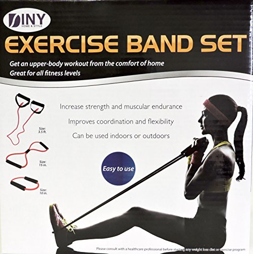 DINY Sport Products Resistance Flex Band Set 3 Piece Increase Strength and Muscular Endurance Physical Therapy Includes Carrying Case