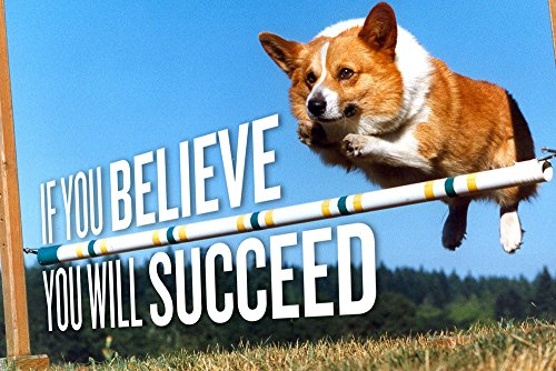 Animals dogs Corgi motivation - Art Print On Canvas Rolled Wall Poster Print - 20