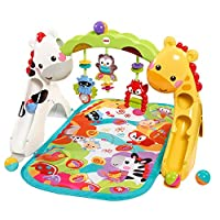Fisher-Price Newborn-to-Toddler Play Gym, Rainforest
