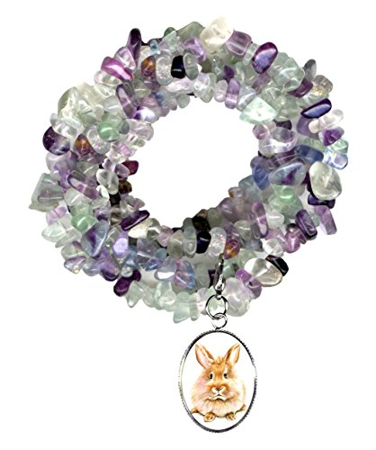 Gw1 Costumes (Bunny Rabbit Charm Clip Fluorite Gem Wrap Bracelet or Necklace)