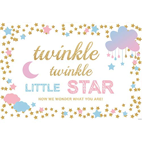 OFILA Baby Shower Backdrop 6x4ft Twinkle Twinkle Little Star Theme Baby Shower Photos Background Gender Reveal Party Boys Girls Baby Shower Shoots Newborn Baby Portraits Digital Studio -