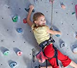 10 Pack, Textured Rock Climbing Holds for Kids with