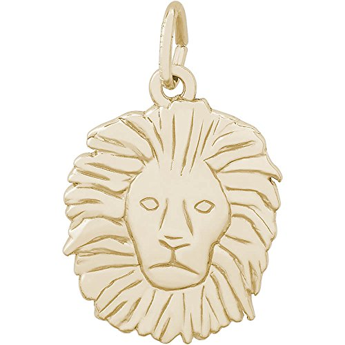 Rembrandt Charms 14K Yellow Gold Lion Head Charm (0.8 x 0.65 inches) by Rembrandt Charms