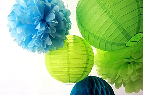 SUNBEAUTY 5er Set Blau Grün Serie Tissue Papier Pompom & Honeycomb Ball Wabenball & Lampion Mixed Geburtstag Feier Party Dekoration (Blau & Grün)