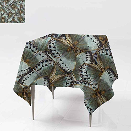 AndyTours Square Tablecloth,Exotic,Butterflies Jungle Queen Animal Spiritual Wings Nature Moth Transform Print,for Square and Round Tables,60x60 Inch Almond Green Gold
