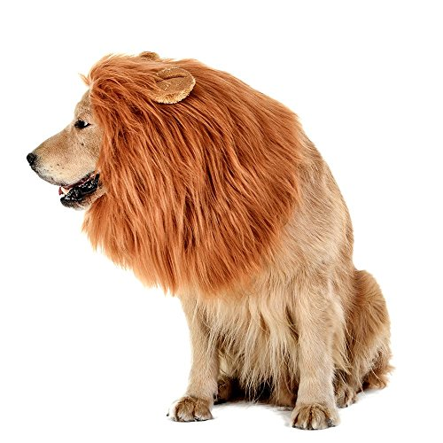 [[PetHug] Dog Lions Mane w/ Ears, Dog Costumes - Most Realistic and Funniest Pet Costume for Dogs, Perfect Fitting, Wig Made of Wool Material - Perfect for Halloween and Dog Shows] (Zorro Female Costumes)