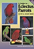 A Guide to Eclectus Parrots as Pet and Aviary Birds
