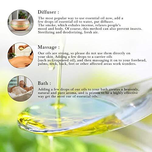 RAINBOW ABBY 6-Pack Orangic 100% Pure Essential Oil Set (Vanilla, Coconut, Mango, Pineapple, Clary Sage, Calendula) 6x10ML