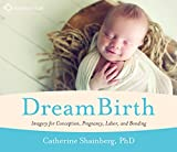 DreamBirth: Imagery for Conception, Pregnancy, Labor, and Bonding