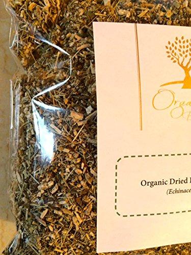 Organic Bio Herbs-Organic Dried Echinacea (Echinacea Purpurea) 6 -