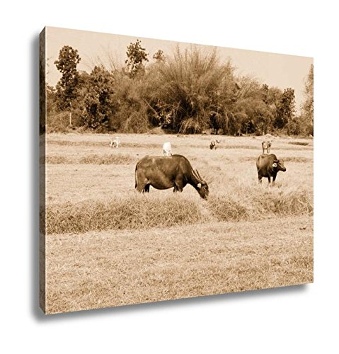 Ashley Canvas Thai Buffalo Walk Over The Field Go Back Home With Sunset Life, Wall Art Home Decor, Ready to Hang, Sepia, 16x20, AG6344413 by Ashley Canvas