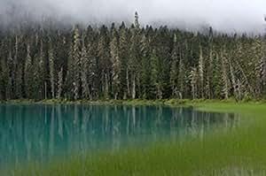 Raymond Klass / DanitaDelimont – Blue glacial lake evergreen forest British Columbia Photo Print (69,85 x 46,41 cm)