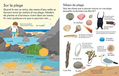 La nature - Mon premier livre avec autocollants: 9781474930437: Amazon.com: Books