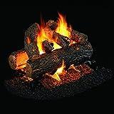 Peterson Real Fyre 24-inch Golden Oak Designer Plus See-thru Log Set With Vented Natural Gas G45 Burner – Match Light Review