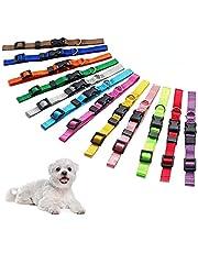 Puppy ID Collars Hond kraag Nylon Verstelbare Identificatie Kraagen, Geschikt voor kleine honden en katten (12st)