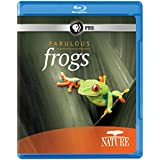 NATURE: Fabulous Frogs [Blu-ray]