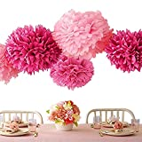 Bekith 20 Pack Tissue Paper Flowers Pom Poms Wedding Decor Party Decor Pom Pom Flowers Pom Poms Craft Pom Poms Decoration