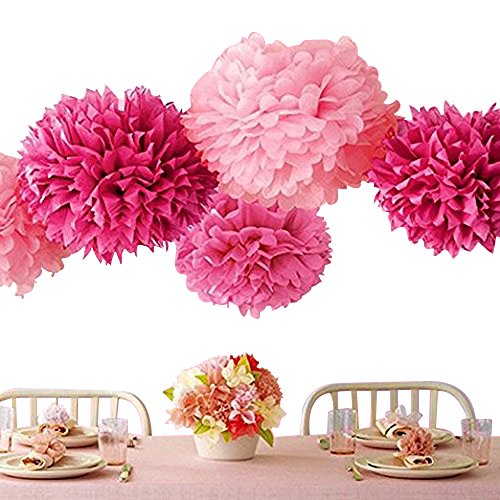 Bekith 20 Pack Tissue Paper Flowers Pom Poms Wedding Decor Party Decor Pom Pom Flowers Pom Poms Craft Pom Poms Decoration by Bekith