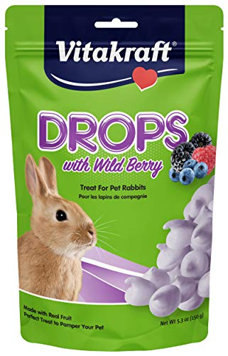 - Vitakraft Rabbit Drops With Wild Berries Treat, 5.3 Ounce Pouch