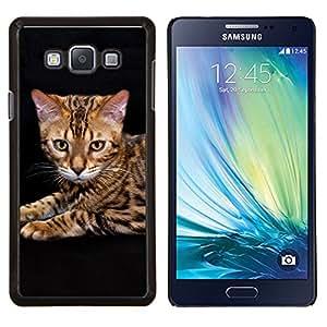 EJOOY---Cubierta de la caja de protección para la piel dura ** Samsung Galaxy A7 A7000 ** --Gato Toyger Ocicat Bengala Serengeti