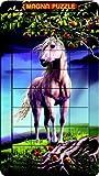 3D Portrait Magna Puzzle Horse