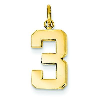 Amazon 14k gold medium polished number 3 charm pendant 14k gold medium polished number 3 charm pendant jewelry mozeypictures Images