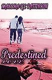 Predestined Love: An Inspirational Christian Novel