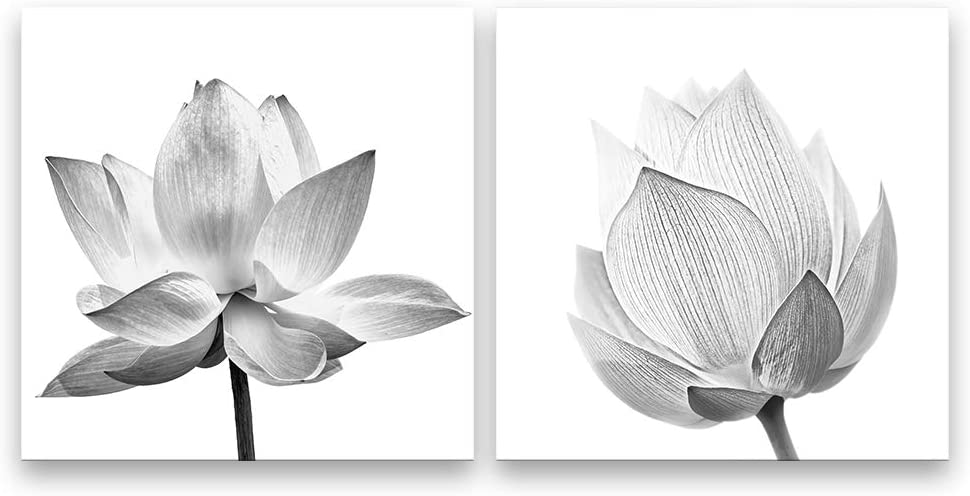 """SIGNFORD 2 Panel Canvas Wall Art Abstract Lotus Canvas Prints Painting Wall Decor for Living Room Wooden Framed Home Decorations - 16""""x16"""" x 2 Panels"""