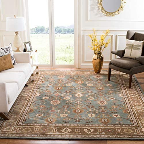 Safavieh Total Perform Collection TLP723A Hand-Hooked Blue and Taupe Area Rug 9 x 12