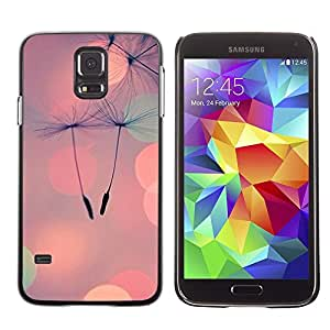 For SAMSUNG Galaxy S5 V / i9600 / SM-G900F / SM-G900M / SM-G900A / SM-G900T / SM-G900W8,S-type® Seed Peach Summer Love - Arte & diseño plástico duro Fundas Cover Cubre Hard Case Cover