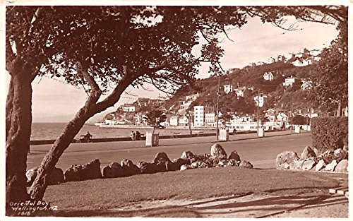 Oriental Bay Wellington New Zealand Postcard