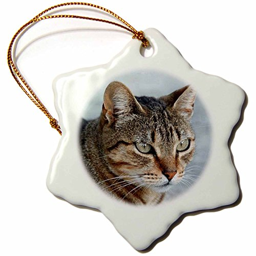 Snowflake Cat - Taiche Acrylic Art Tabby Cat Portrait Snowflake Porcelain Ornament, 3-Inch