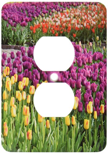 3dRose lsp_47802_6 Fields Of Tulip Flowers- Spring Colors- Photography 2 Plug Outlet Cover