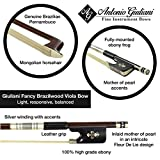 Giuliani Fancy Brazilwood Viola Bow (1/2)
