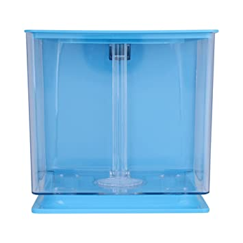 Socialme-EU Mini Tanque de Peces de Plástico Acuario Ambiental Creativo con Acuario Sistema de Filtro Automático Decoración Suministros(Azul): Amazon.es: ...