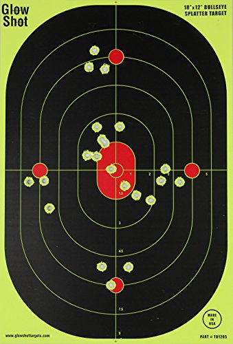 12 x 18 target - 8