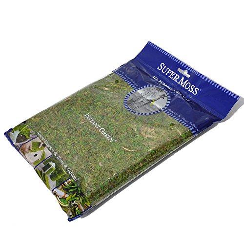 Miniature Fairy Garden Moss Mat product image