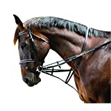 KINCADE WEB GERMAN MARTINGALE SET BLACK FULL
