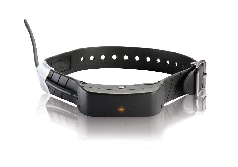 SportDOG Brand Add-A-Dog Collar for TEK Series 1.0 GPS Tracking (TEK-L-C)
