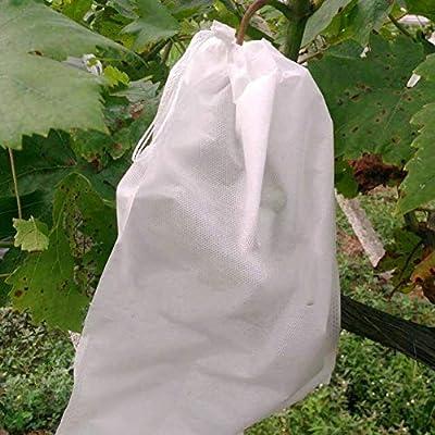 LYCOS3 Bolsa de protección de Frutas, 100 Unidades, Bolsa de prevención de Frutas y Verduras, Control de plagas agrícolas, Bolsas de Tela no Tejida ...