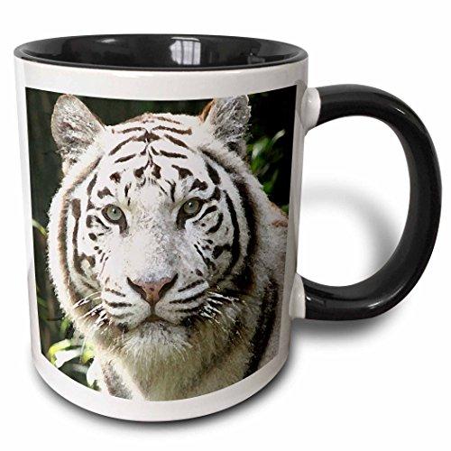 3dRose 4845_4 White Tiger Ceramic Mug 11oz Black
