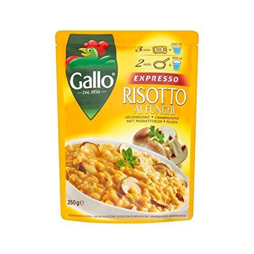 Riso Gallo Expresso Risotto Mushroom 250g - Pack of 4 by Riso Gallo