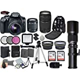Canon EOS Rebel T6 DSLR Camera Bundle with EF-S 18-55mm f/3.5-5.6 IS II Lens + Canon EF 75-300mm f/4-5.6 III Lens + Professional Complete Accessory Bundle (20 Items)