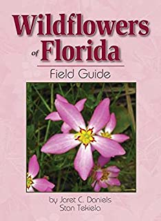 floridian chart in botany: Florida wild flowers and roadside plants c ritchie bell bryan j