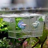 Carreguard Pondoir Flottant 2 En 1 Aquarium d'Elevage Incubateur de Poissons Boîte 12x7x7cm