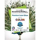 Hammermill Paper, Premium Laser Gloss Paper, 8.5 x 11 Paper, Letter Paper, 32lb Paper, 94 Bright, 1 Pack / 300 Sheets (163110R) Acid Free Paper