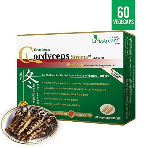 Lifestream Greenhouse Cultivated Cordyceps Stroma – Singapore #1 Medicinal Mushroom Supplement with Tea Polyphenols…